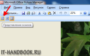 Режим эскизов в Microsoft Office Picture Manager